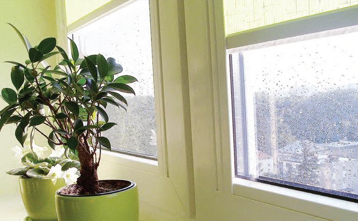 окна как один из источников утечки тепла