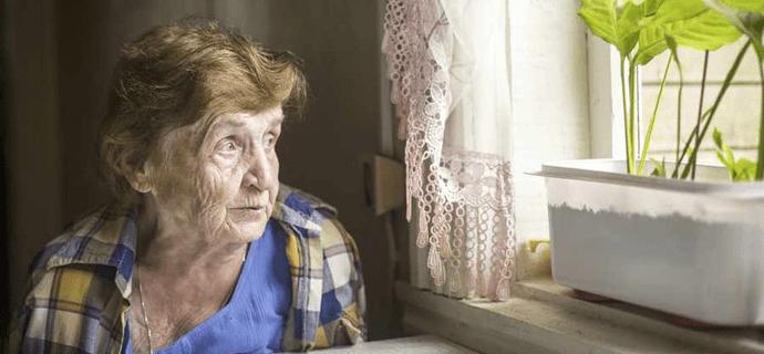 Престарелая бабушка у окна с цветком